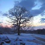 Happy #WinterSolstice. http://t.co/MjDbpG6lur