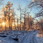 Кумысная поляна. Декабрь. Саратов. http://t.co/HZhClgzn4G