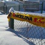 @BarcelonaSCweb @Hincha_Amarillo @lafinalHistoricaxGamatv comparto con ustedes la foto desde el polo norte http://t.co/hTeN2uQAJj