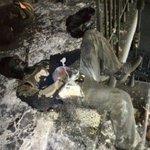 esta vaina fue en Odesa....Ucrania....Grupos Nazis apoyados por EEUU.....Quien Coñoemadre va a Sancionar a EEUU? http://t.co/sFYBZS1rD1