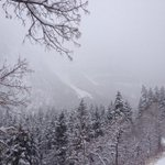 Large natural avalanche reported, NE chute Elk Point, Provo Canyon. Photo: Matt Primomo http://t.co/ZKT0jR9HSH