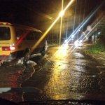 Las calles se convirtieron el ríos el Ochoa León, vehículos pasan con mucha dificultad http://t.co/PKFeGhoSvr