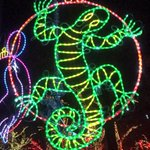 @ProfilerPatB Happy Winter Solstice! ????our zoo is cool. http://t.co/80KrnDdQtU