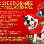 Va a estar increíble la noche canina que tendremos hoy en la #EstaciónMágica2014 ¡Ven con tu mascota! http://t.co/uKwM9Amjdq