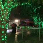 Some shots from Downtown #Houston. #Christmas #HolidayLights #ChristmasLights #Hanukkah #Texas http://t.co/38bwwgKTXn
