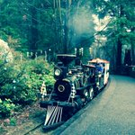 Stanley Park Christmas train #yvr http://t.co/Z9czOIs4VH