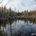 Медведев подписал документ, ускоряющий развитие Республики Карелия http://t.co/mp4V7p5lJg http://t.co/7faeEVZOBv