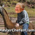 #MasterChefenLlamas Descripción gráfica: http://t.co/EMcyAa5tP0