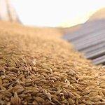 Правительство России планирует ввести ограничение на экспорт зерна http://t.co/BnJ4OqgsoZ http://t.co/LG8QjYViK7