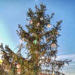 Avete già visto il nostro albero di Natale a #Milano? Le decorazioni rappresentano i Paesi espositori in #Bit2015 http://t.co/1hCeu2cby6