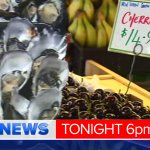 Christmas food FRENZY - how much will festive favourites cost YOU this year? @laurenbarker__ in #9NewsAt6 #9Newscomau http://t.co/mwpxyTuJEZ