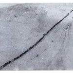 Şehitliğe giden uzun bir yolculuk.. Tarih; 1914 yılının Aralık ayıydı.. http://t.co/RCXZBSIV6L