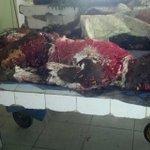 """@naziru_muktar: @MusadiqZ @omojuwa @DeleMomodu @ogundamisi some of the #gombe #bombblast victims http://t.co/KIfU6y9ArQ"" Sad :("