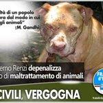 #FdIAN Il Governo #Renzi depenalizza il #reato di maltrattamento di #animali. Vergogna! http://t.co/GpFKyjSiW7