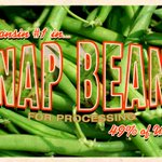 Will you enjoy a green bean casserole this week? Wisconsin grows almost half the nations snap beans for processing! http://t.co/urhf3rsBUV