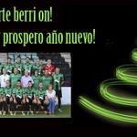 Desde el @SestaoRC os deseamos a tod@s felices fiestas y prospero año nuevo ZORIONAK ETA URTE BERRI ON GUZTIOI! http://t.co/Uq0fHubvh3