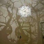 Luminária cria efeito de floresta nas paredes. http://t.co/Q6KrKEeMpC http://t.co/eCRsbiULyu