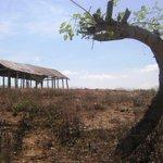 Carrizal, la tierra donde nació El cantor campesino @DiomedesDiaz http://t.co/wbnkCBCwzK @juanrinconv @FESVALLENATO http://t.co/ENXNeQHGTy