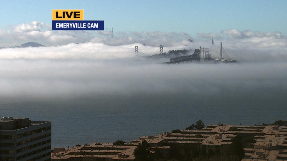 Fog creating photogenic #bayarea today.  #wxwindow http://t.co/Lz3PWLggvd