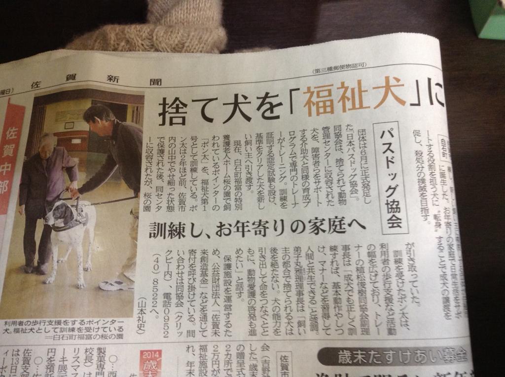 福祉犬 http://t.co/jzAIc6stt7