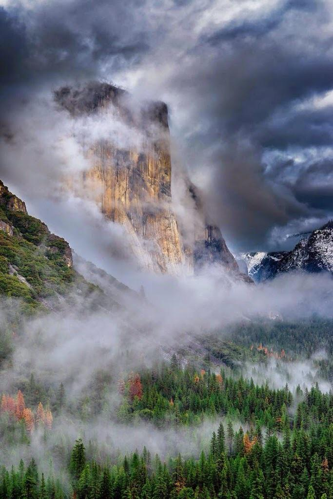 El Capitan, Yosemite, CA by Murali Achanta  #california   #yosemite   #nationalpark http://t.co/wWwFxT7ulS