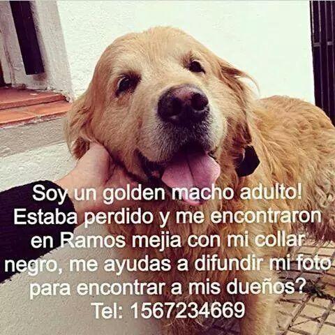 ¿Me ayudan a difundir, por favor? GRACIAS! Cc @borgesgra @peladocqcok @valeriaschapira @LeandroLeunis @rock_pix http://t.co/LdNg8b5fcr