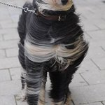 Todays best windy weather pic http://t.co/2vgnsg4PVX (via @MsAshleyDavies)