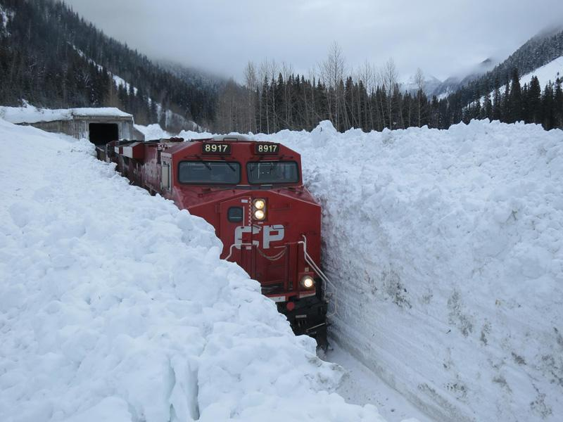 Picture of the Day: Meanwhile in Canada http://t.co/UEXC4Oteli http://t.co/5ToGoNmoZZ