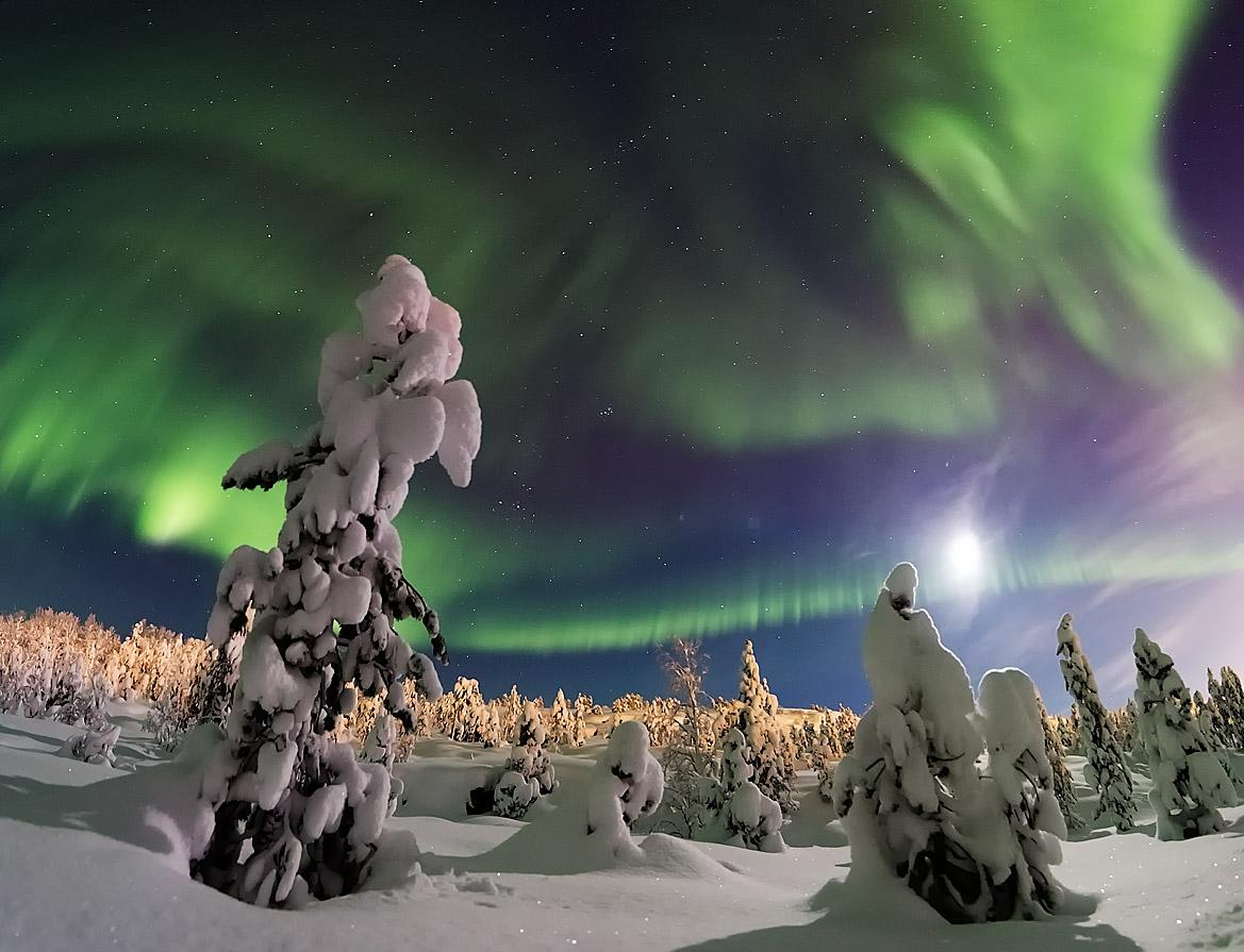 Wonderland arctic circle aurora, Kola Peninsula, Russia-Luba Trifonova shared at http://t.co/SIk5goKhYW http://t.co/AdrEjaLyZH