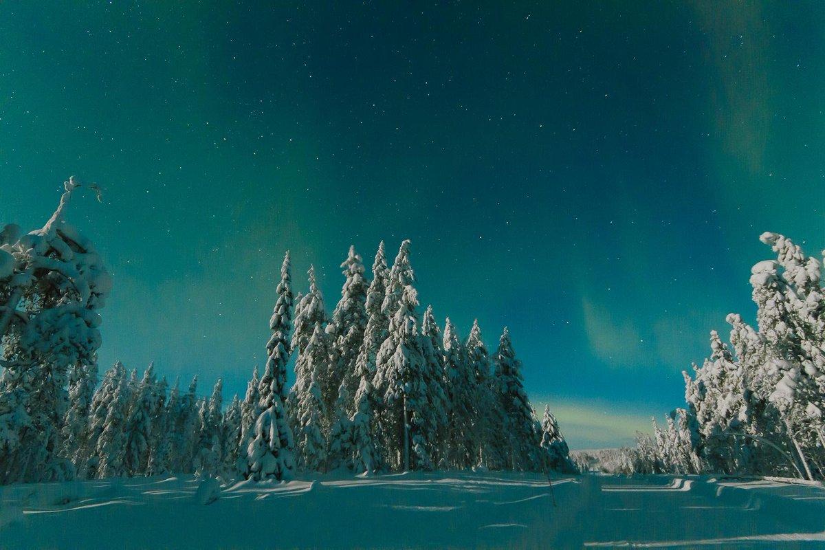 オーロラを見ました!ヽ(=´▽`=)ノ 初めて見たんだ! http://t.co/plTDW8c23S