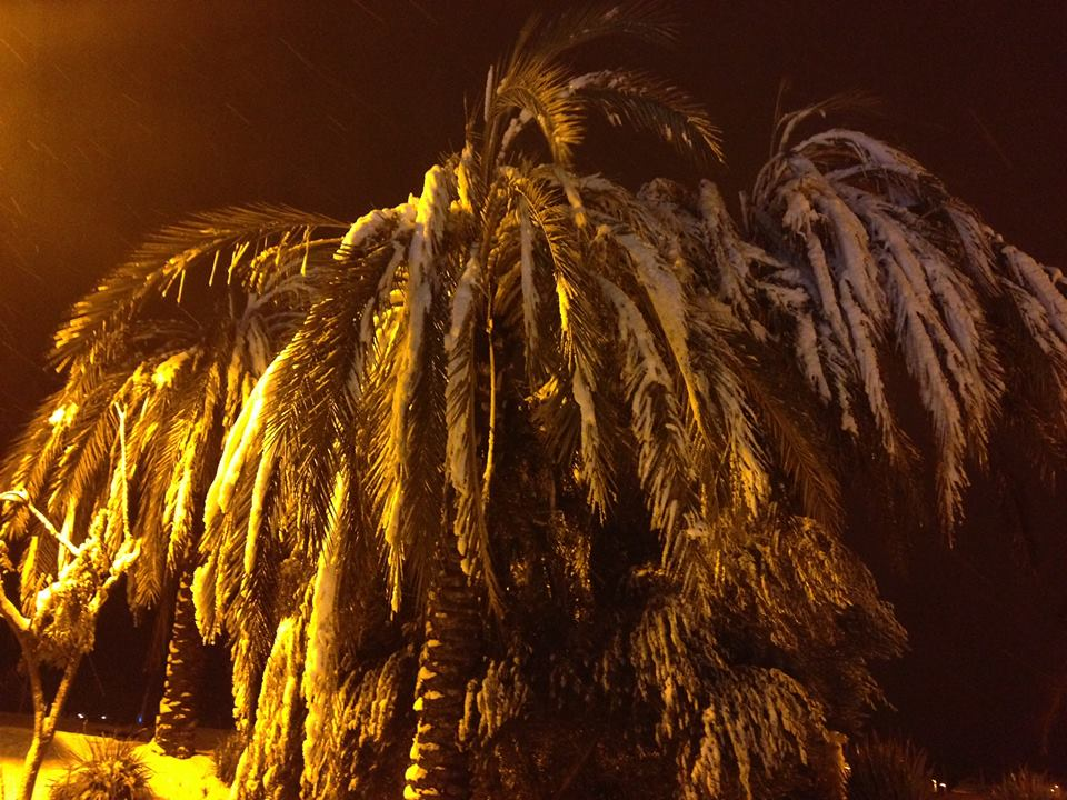 Look ! Snow on palm trees in Murrietta. My FB follower posted this. Pretty unusual sight! #NBC7 http://t.co/VRSuc9YgJ5