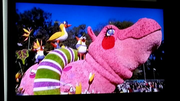 Look its @zappos float in the 126th @roseparade Lily the Hippo #ServingASmile #nbcroseparade http://t.co/lFero5iw4i http://t.co/8HqBDefEnW