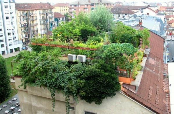 Houd u van #groen, dan kunt u dit op uw dak doen. @VvanRijsewijk @Tekenjetuin @grootgroenplus @joukjebroier #daktuin http://t.co/Uq5nZndN3G