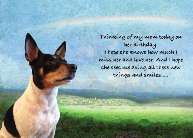 Arrrooooo. Today is my mom's birthday. I made this for her. I miss her and love her. http://t.co/iviC8CAhOr