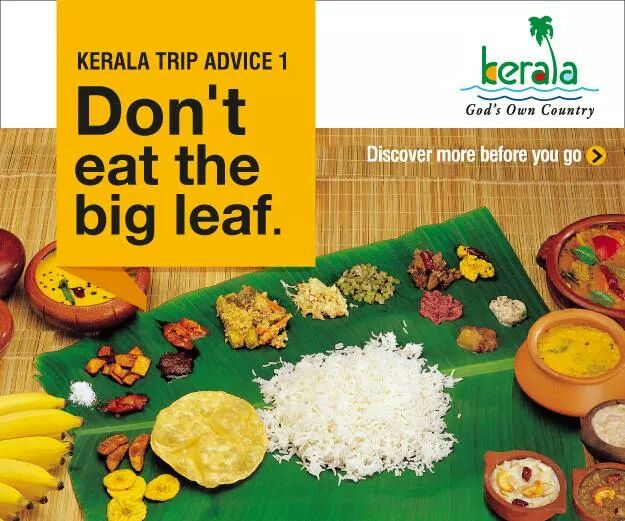 Trip Advice 1 : Don't eat the big leaf.  #travel #ttot #lp  Disover More: https://t.co/adkRu6w0G1 http://t.co/fm6BvOQ4H9