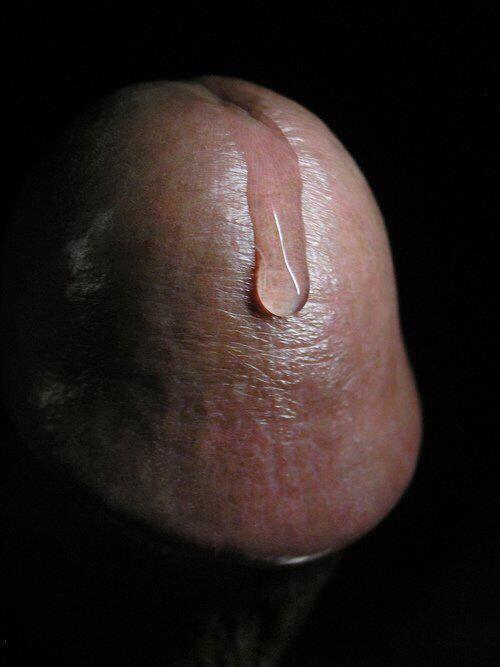 Accidental anal bang bros