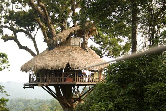 These 15 tree houses are SO cool (especially #7) http://t.co/cJifXKvLl2 http://t.co/iPZZ87SWR6