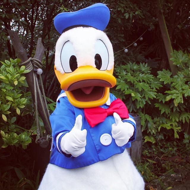 disneylandparis, sleepingbeautycastle, lechateaudela, DisneyCharacter, DisneyPrincess, Brave, Merida, DisneyXmas, DisneylandParis, Xmas, tbt, disneylandparis, minniemouse, Disney, DisneylandParis, DisneylandParis, DisneylandParis, indianajones, templeofdoom, DisneylandParis, Disney, KenzaMorsli, DisneylandParis, DisneylandParis, excited, cannotwait, DisneylandParis, WaltDisney, MediaLive, DisneylandParis, Exciting, MinnieMouse, disneylandparis, donald, duck, donaldduck, fun, cut