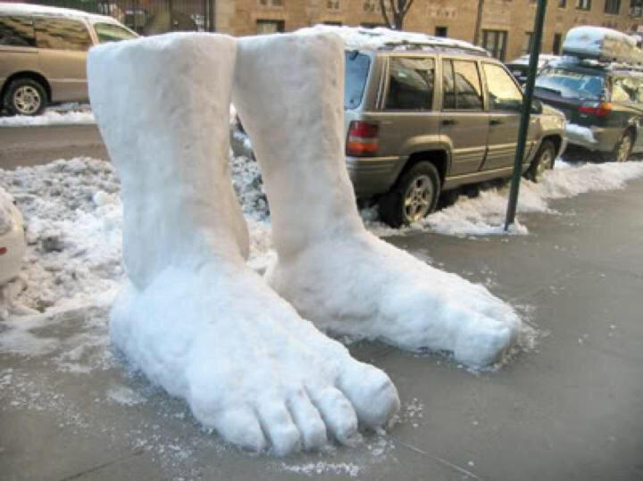 2 feet of snow in Sheffield.... http://t.co/12fSfs94lT