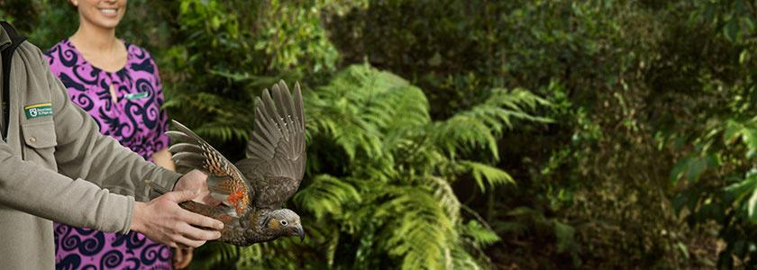 Together with the Department of Conservation we're helping to protect NZ. Learn more here: