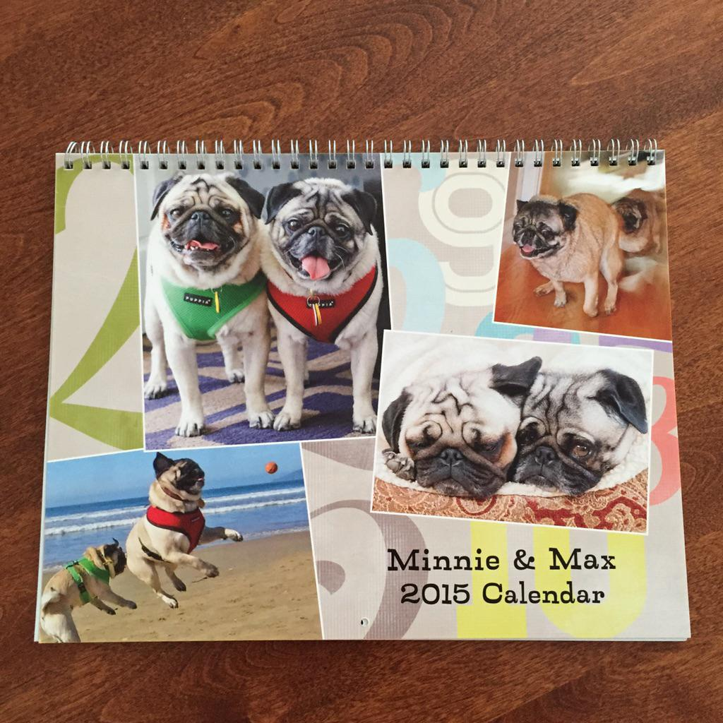RT @EmmaThePug: My Minnie and Max calendar came!!  So adorable! Thank you @MinnieMaxPugs , @HamiltonPug , and #pugchat !! http://t.co/G4IjV5vyNZ