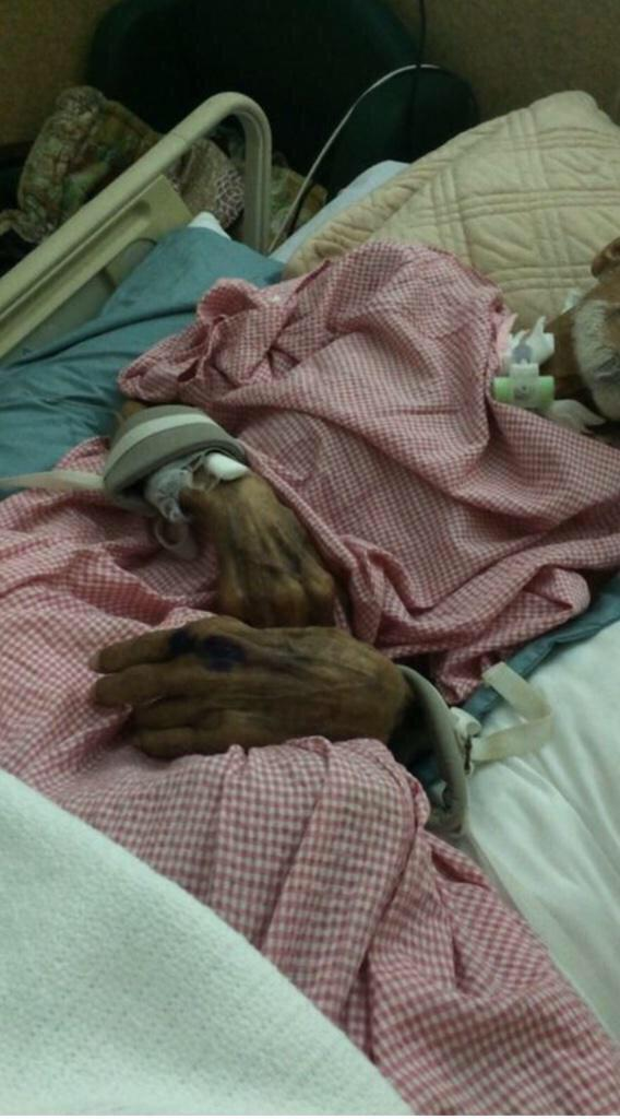 مستشفى الملك فهد بـ #جدة يستعين بالشرطة لإخراج مريض وابنه يطلب تدخّل #وزير_الصحة!  #مستشفى_حكومي_يطرد_مريض - http://t.co/Ae97A1U6PN