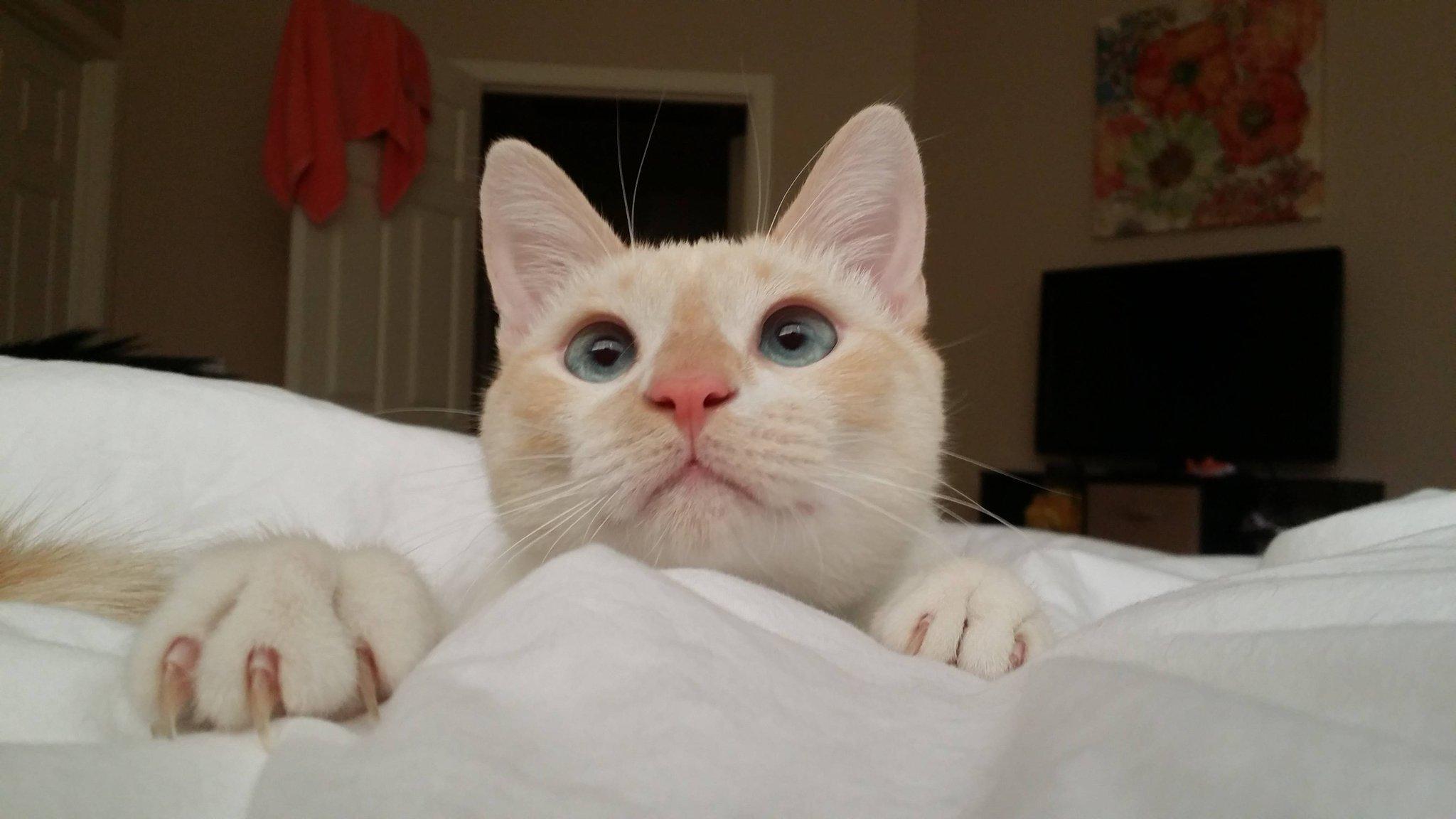 """Wake up, mom!"" http://t.co/yAWplrqpQ9"