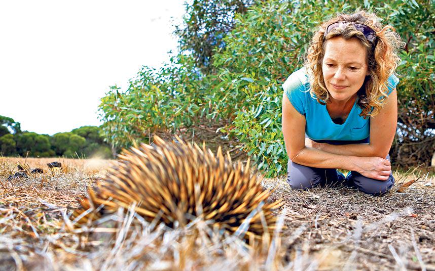 Video: @katehumble sees the wild side of South Australia, where food + wine play second fiddle