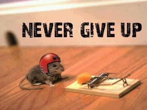 #Vision is challenging. It's scary. It will take you out of your comfort zone. But never give up. http://t.co/sUhXnk64pa