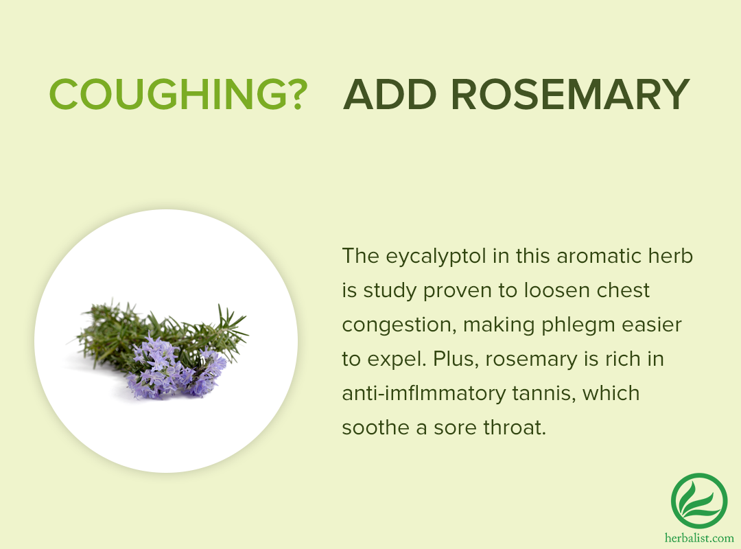 Coughing due to winter illness? Try incorporating Rosemary into your meals to loosen chest congestion. http://t.co/vO8pkWXueh
