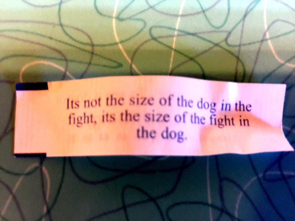 I expect my fortune cookies to dispense better wisdom than I can receive on a No Fear T-shirt. http://t.co/dDBBXTXX9r