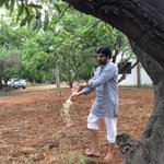RT @PawanKalyan: Preparing the soil with #Jeevamrutham  to grow vegetables at farm  in #Subash Palekar's (ZBNF) method. http://t.co/qXm7Qz6…