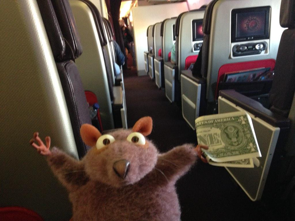 Uh oh! There are Rats onboard! @furcon here we come! #MONGRELS http://t.co/1TWaWbOK5C