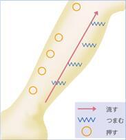 ★ふくらはぎ痩せマッサージ★ ❶アキレス腱からふくらはぎ裏中心を指圧する ❷すねの骨の両脇の筋を指圧する ❸ひざ裏の筋肉の付け根リンパをしっかり指圧する ❹ねじりを加えしっかりモミほぐす ❺ふくらはぎを下から上へさすり押しあげる http://t.co/DmtqRNMxiD